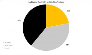 Graph 3a - Labour Availability and Working Practices